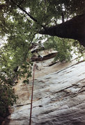 Rock Climbing Photo: Brushing Dial 911