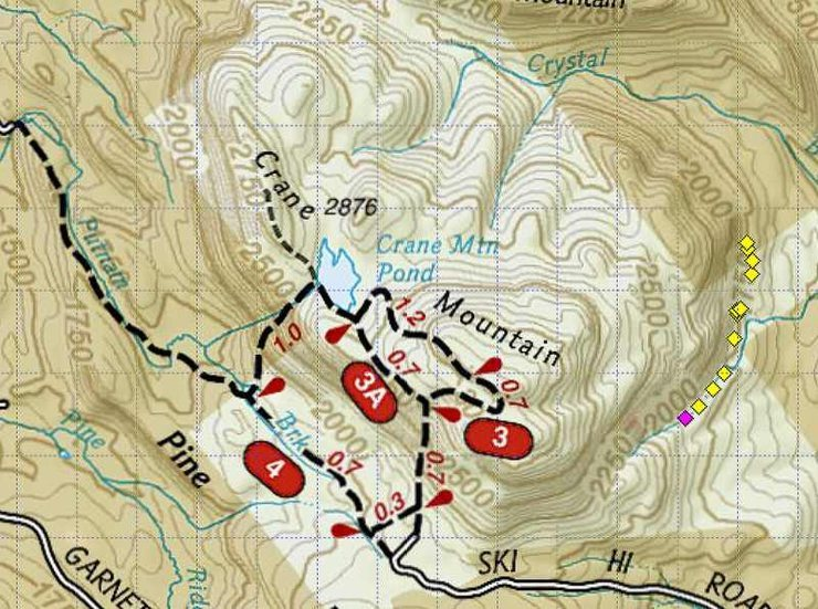 The small diamonds represent most of the SE side ice routes from the <em>Waterfall Wall</em> (pink diamond) northward to <em>Leap of Faith</em>, currently the northernmost ice route on this side of the mountain.<br> Map courtesy of Topo! Nat'l Geographic