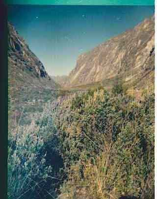 At the beginning of the valley to Rinrihirca.