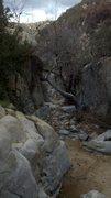 Rock Climbing Photo: Looking down the creek.