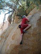Rock Climbing Photo: Peppertree Problem (V2), Mt. Rubidoux