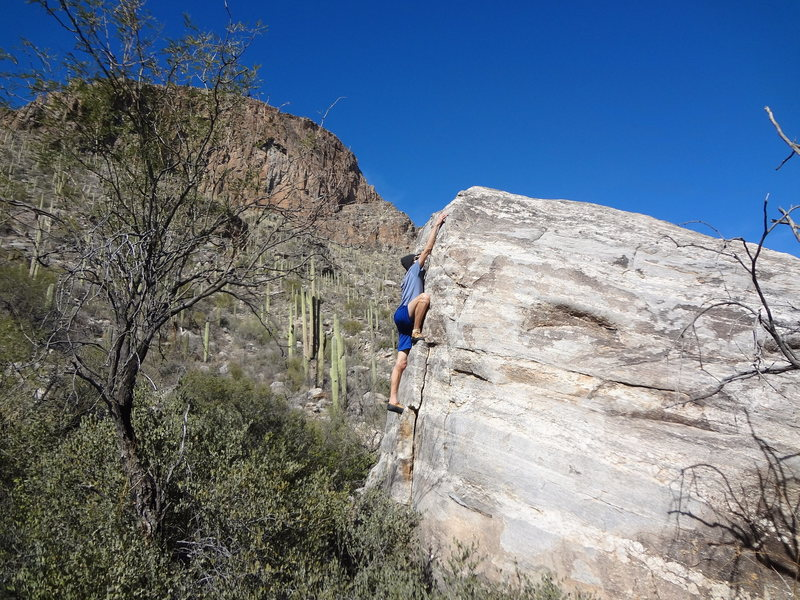 Rock Climbing Photo: Trail Boulder in January