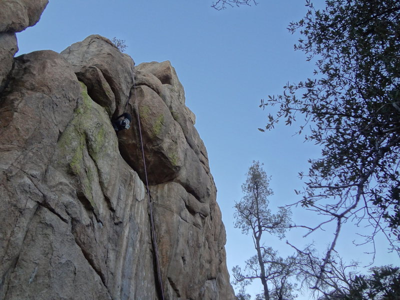 Rock Climbing Photo: Monarch toprope