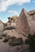 Rock Climbing Photo: Turtle Rock. Joshua Tree, CA. March 2005.