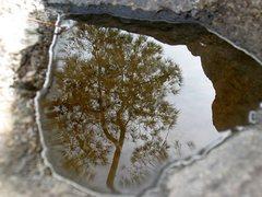 Rock Climbing Photo: Reflection atop the Beehive Wall, Mt. Rubidoux