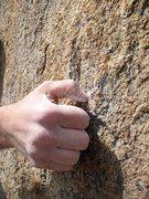 Rock Climbing Photo: Crimping on Flight of the Bumble Bee (V4), Mt. Rub...
