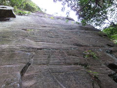 Rock Climbing Photo: Another wall off in the jungle