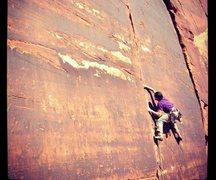 Rock Climbing Photo: Puma