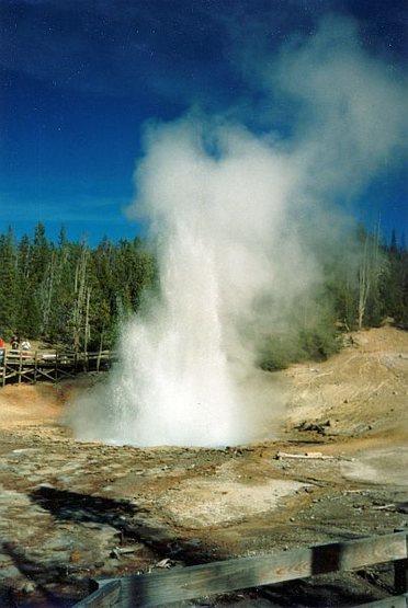 Rock Climbing Photo: Gushing geyser, Yellowstone NP