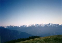 Rock Climbing Photo: Hurricane Ridge, Olympic NP