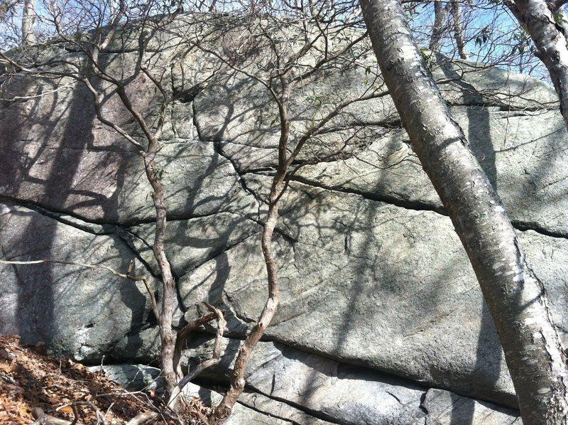 Rock Climbing Photo: Nemo and Charlottle Go Bonzai V1