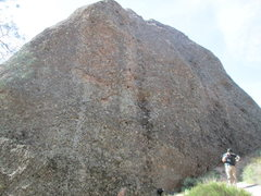 Rock Climbing Photo: sponge