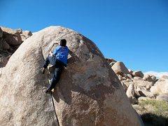 Rock Climbing Photo: Bluecut (V0), Joshua Tree NP