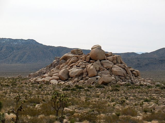 Rock Climbing Photo: Rocky Marciano, Joshua Tree NP