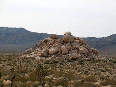 Rock Climbing Photo: Rocky Marciano, Joshua Tree NP