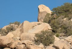 Rock Climbing Photo: Green Visitor Rock, Joshua Tree NP
