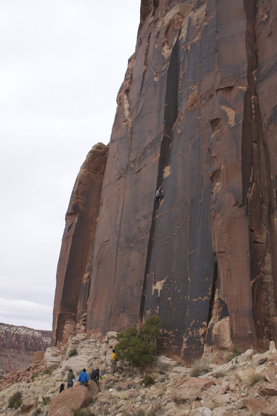 Rock Climbing Photo: Christmas Tree