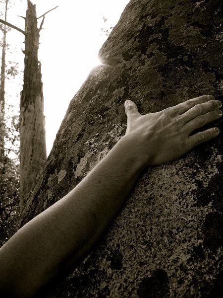 Rock Climbing Photo: Yosemite Bouldering