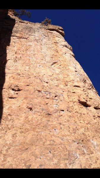 Rock Climbing Photo: Shelf Road Top 10!