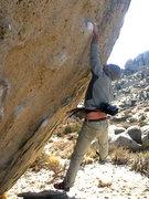Rock Climbing Photo: Dyno!