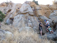 Rock Climbing Photo: Digitalis