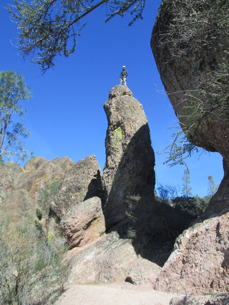 Rock Climbing Photo: Daniel on top of Piglet Pinnacle