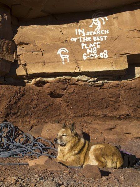 Stupid graffiti at base. And Chip's dog, Art