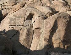 Rock Climbing Photo: Moment's Notice (5.6 R), Joshua Tree NP
