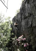 "Rock Climbing Photo: Aaron James Parlier on ""Swept Away"" (V6F..."