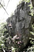 Rock Climbing Photo: Parlier on Worth The Squeeze