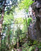 Rock Climbing Photo: Classic crack.
