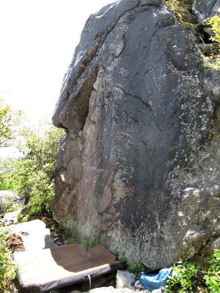 Rock Climbing Photo: Palomino