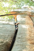 Rock Climbing Photo: Morgan on Muscle Shoals.