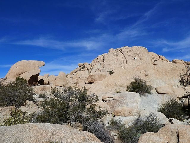 Cuddlebone Dome from the trail, Joshua Tree NP