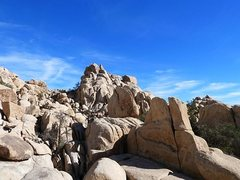 Rock Climbing Photo: Mighty Mouse Rock from the trail, Joshua Tree NP