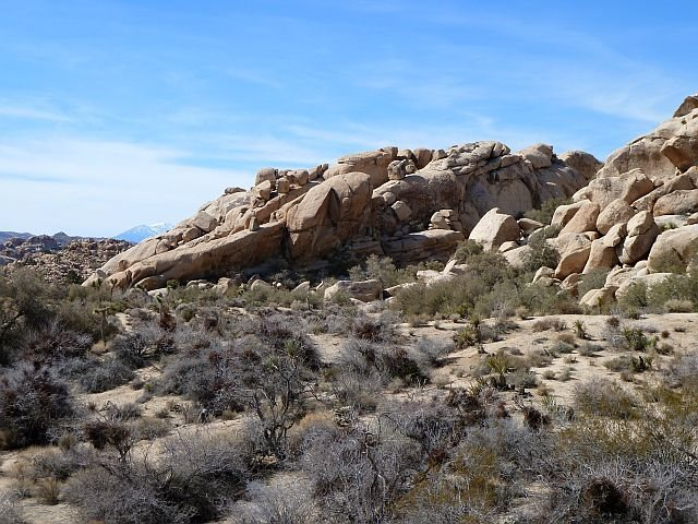 Rock Climbing Photo: Rockworks Rock from the Barker Dam Trail, Joshua T...