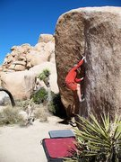 Rock Climbing Photo: The Chube (V0+), Joshua Tree NP