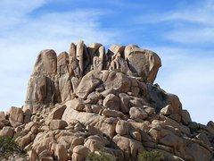 Rock Climbing Photo: Punk Rock, Joshua Tree NP