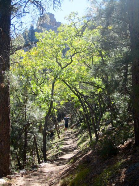 Hualapai hike