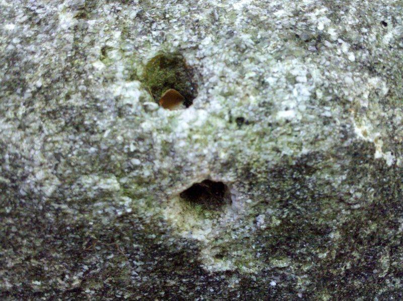 Rock Climbing Photo: rock pipe