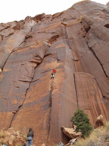 Rock Climbing Photo: ring locks