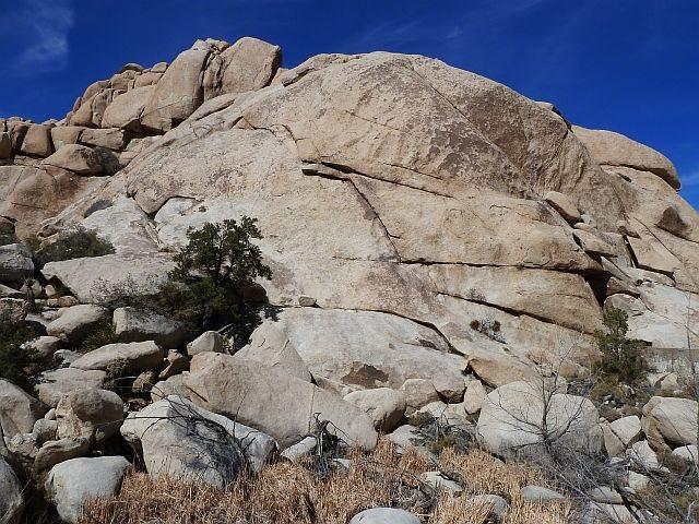 Rat Rock, Joshua Tree NP