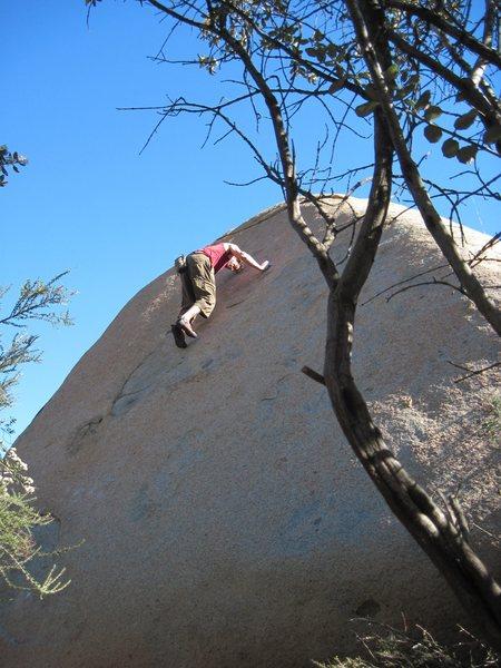 Rock Climbing Photo: Greg's face