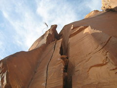 Rock Climbing Photo: throwing the rope down..this climb has gotten hard...