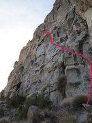 Rock Climbing Photo: Pink.