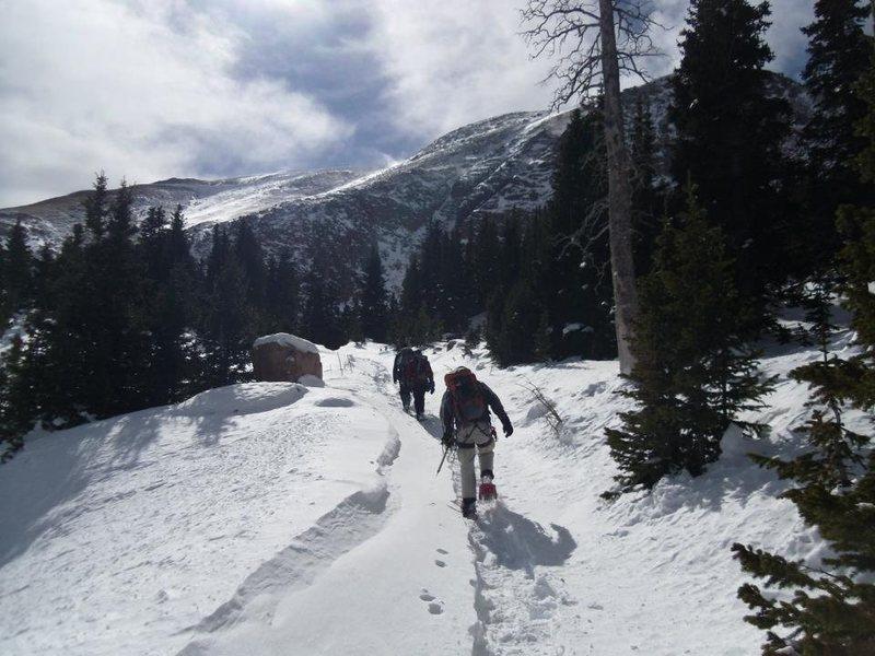 snowshoeing in