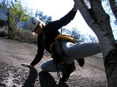 Rock Climbing Photo: Tree stem start to third pitch of Banana Peel
