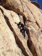 Rock Climbing Photo: Climbing Karpkwitz 5.6 on top rope. Natural anchor...