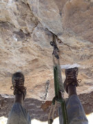 Rock Climbing Photo: Looking down at 3rd bolt while rebolting the 4th b...