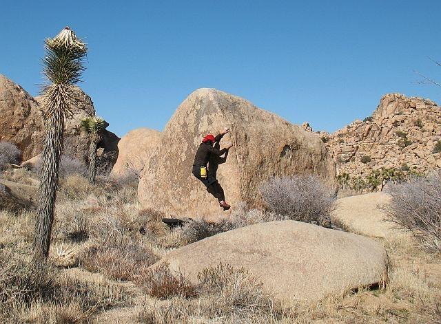 Rock Climbing Photo: Bandulo (V0-), Joshua Tree NP